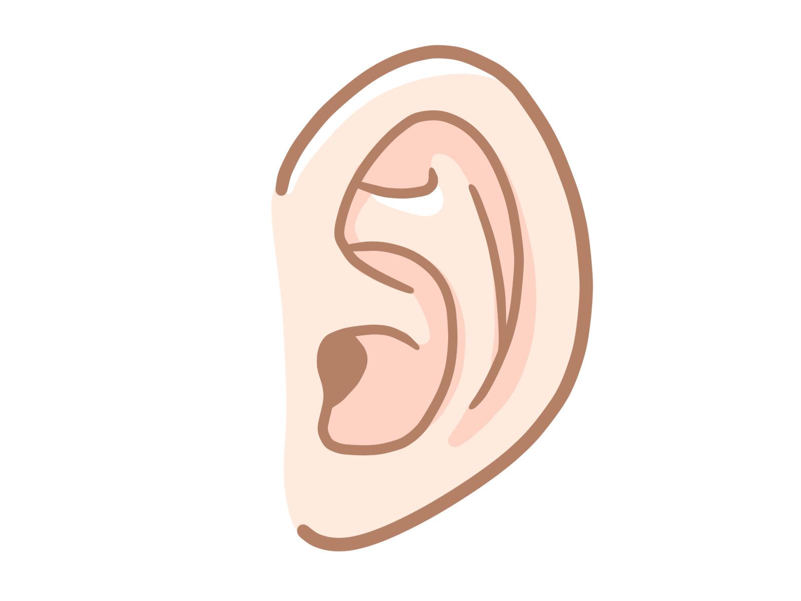 外耳道炎のイメージ